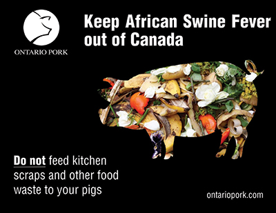 Keep African Swine Fever Out of Canada